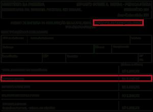 imagem tabela