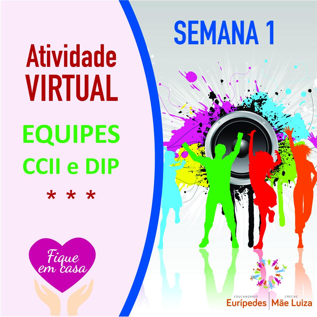 Atividade Virtual_Equipe_LUIZ_Semana1