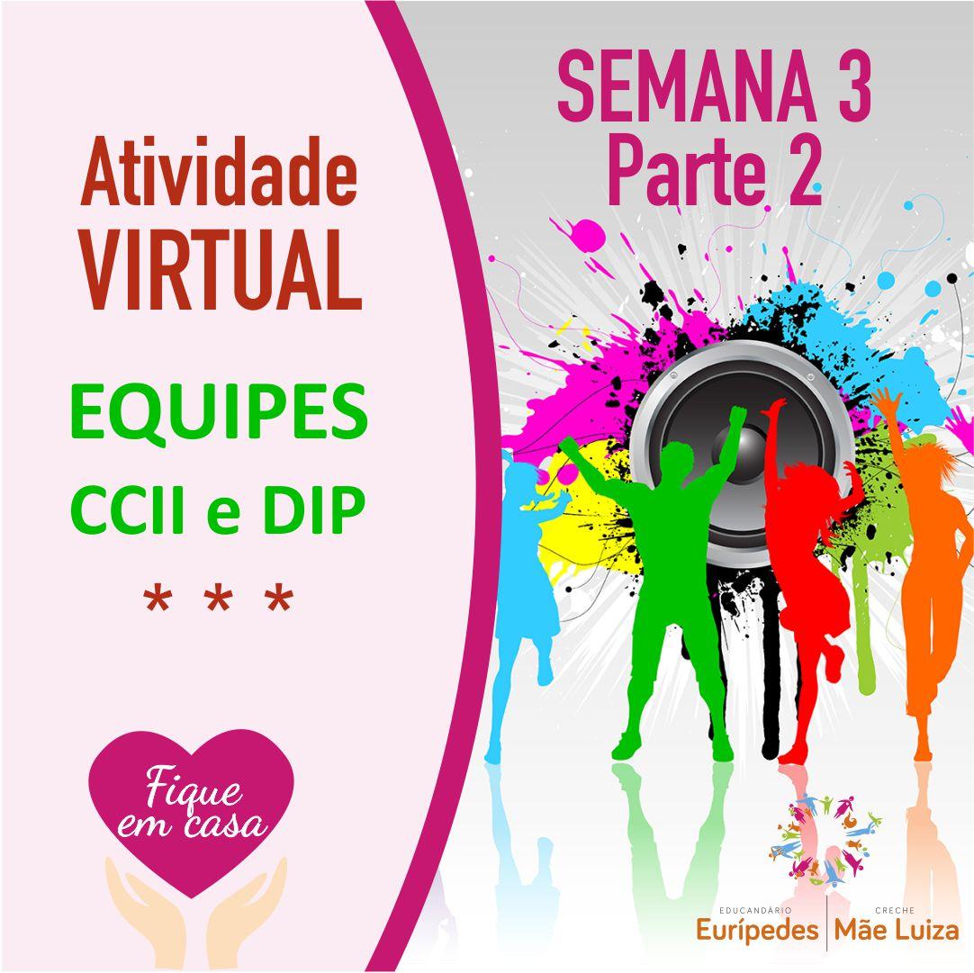 Atividade Virtual_Equipe_LUIZ_Semana3-parte2